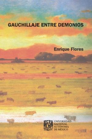 Gauchillaje entre demonios. Una cosmovisión correntina. Del gauchito Gil a Francisco Madariaga